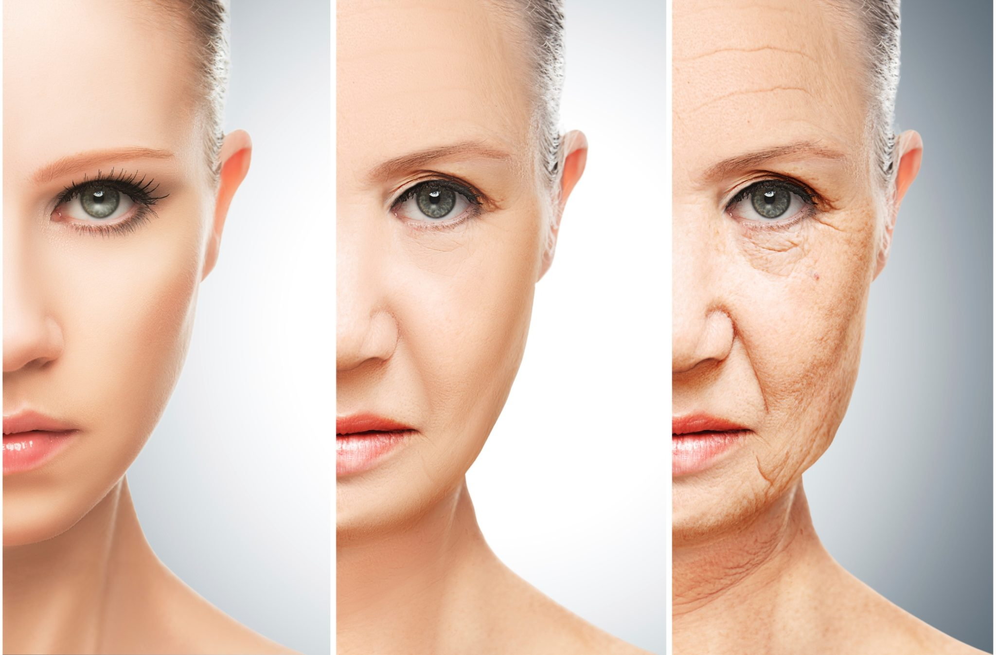 Aging Without Estrogen